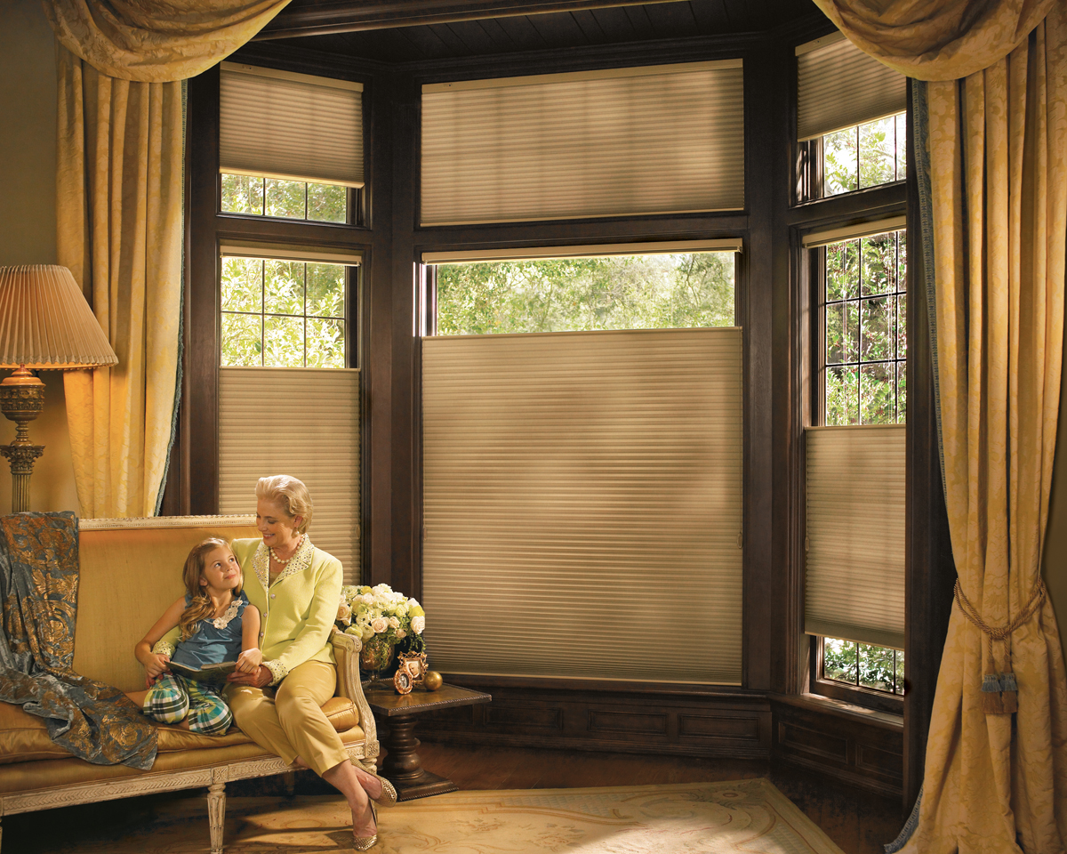 Hunter Douglas Duette Honeycomb Cellular Shades Atlanta