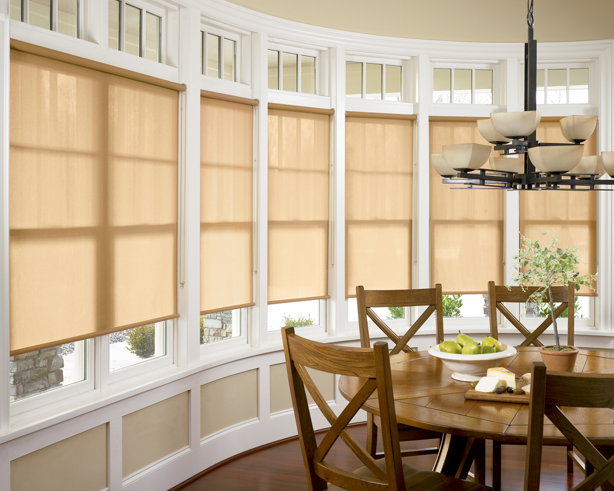 Roller Amp Roman Atlanta Blind And Shade