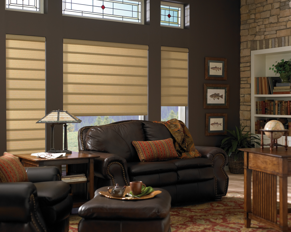 hunter douglas vignette modern roman fabric shades