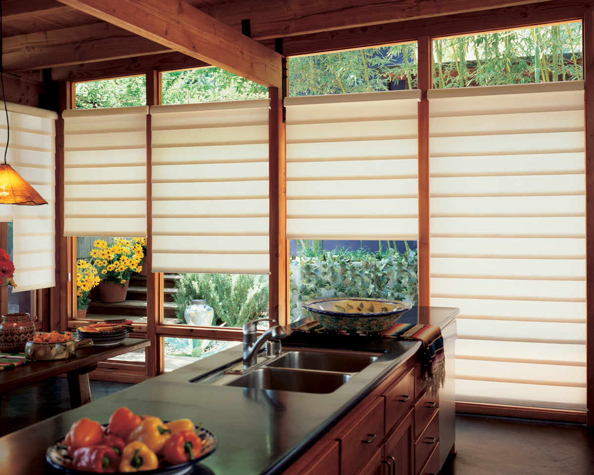 Hunter douglas vignette modern roman fabric shades for Kitchen roman blinds contemporary