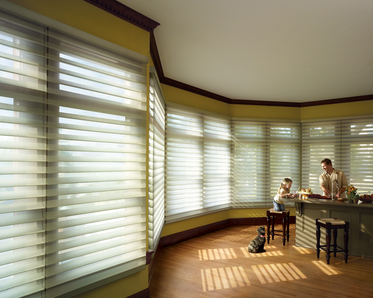 Silhouette shadings atlanta blind and shade for Habillage fenetre baie window