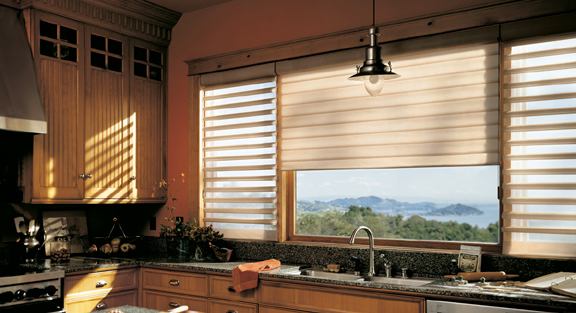Hunter Douglas Pirouette Sheer Window Shades